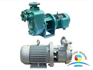 China Reliable Marine Vortex Fresh Water Pump Peripheral CXZ Series supplier
